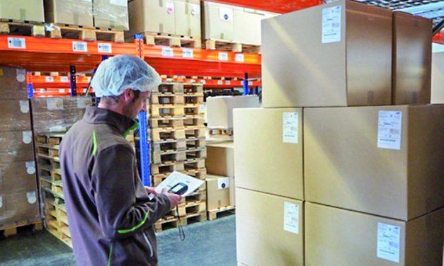 Flexibles ERP-System trifft auf umweltfreundliches KMU